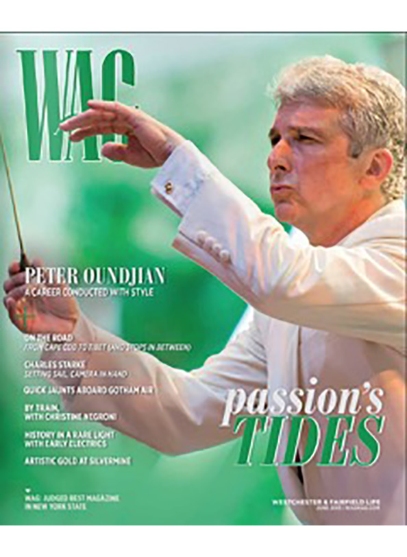 Cover June 2015 Issue of WAG